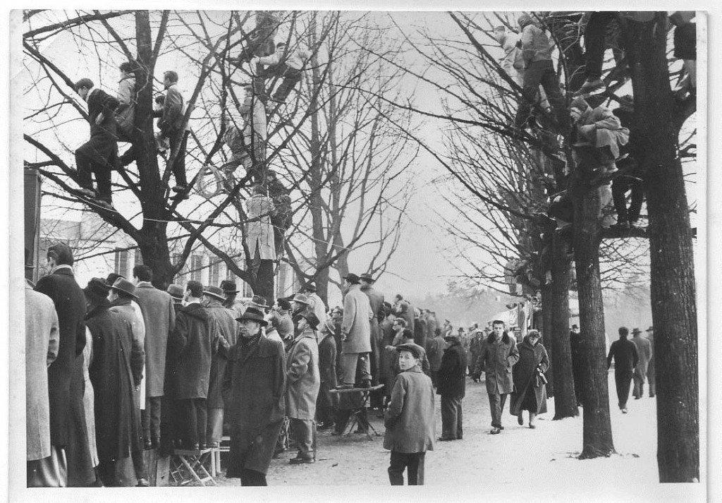 Zuschauer im Ronhof: 50er Jahre